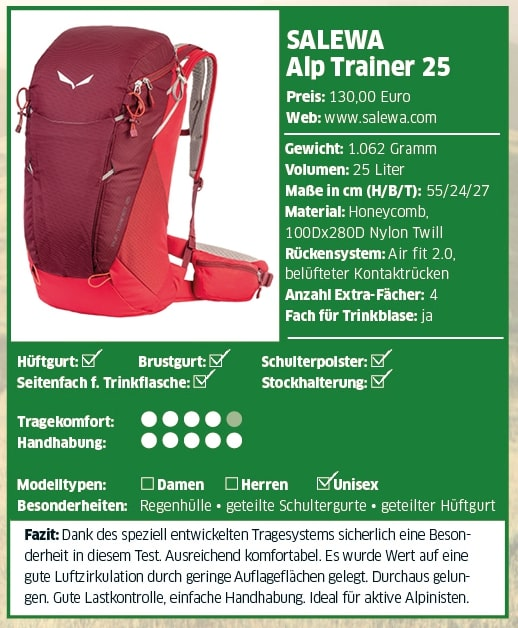 Salewa Alp Trainer 25